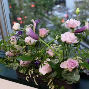 秋雨と薄紫色のバラと。。