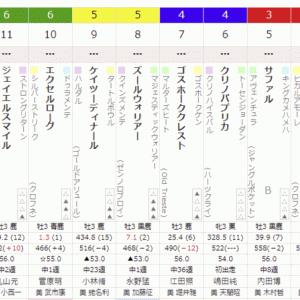 1R 2021/6/27(日) 3回東京8日目  サラ系3歳未勝利 サファル出走