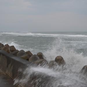 台風が通り過ぎましたが、まだ雨が降り風も強い