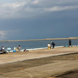 午後は曇りだけど、空振り三振。八重洲浜は水が濁っていた(2019.10.26)