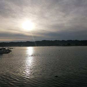 石川県能登島は、釣りの宝庫。でしたよね。