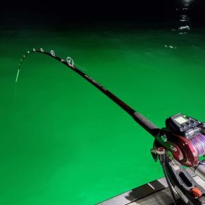 船釣りは、破壊力ハンパ無く釣れますね
