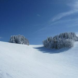 初めてのスキーはすべてお任せがイチバン