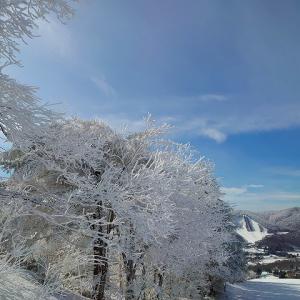 スキー日和でした