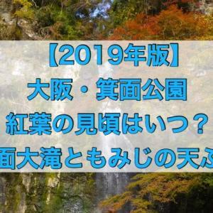 箕面公園の紅葉・2019年の見頃はいつ?見どころは箕面大滝ともみじの天ぷら