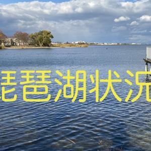 琵琶湖状況 2020年4月3日