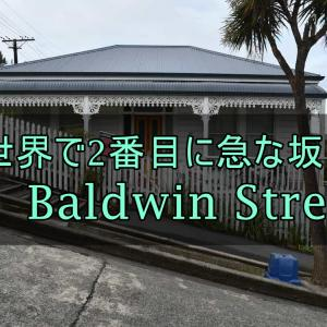 【ダニーデン観光】世界で2番目に急な坂(元世界で最も急な坂)「Baldwin Street」【ニュージーランド】
