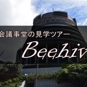 【ウェリントン観光】ビーハイブ(国会議事堂)見学ツアーに参加してきました【NZ】