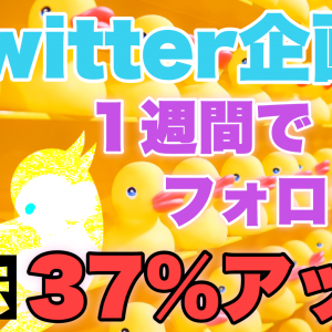 【Twitter企画】1週間でフォロワーが37%増加する方法【検証結果】