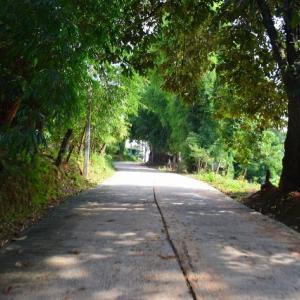 首長族の住む「バーン・トン・ルアン」(Baan Tong Luang Eco-Agricultural Village)には日本の原風景が残っていたっぺ(о´∀`о)