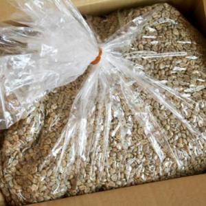 生豆10キロ
