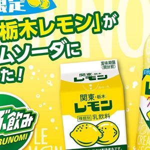 がぶ飲みレモンクリームソーダ 500ml×24本が1,500円で買える4つの理由