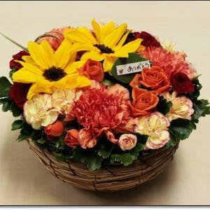 母の日に贈りたいお花、イイハナのお花を紹介します