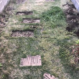 TakahashiがDIYに挑戦! セメントを練って駐車場と玄関アプローチを土間コンクリートにしました(外構編)