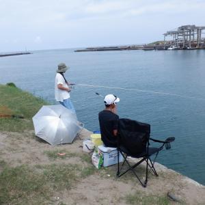 内灘放水路でノマセ釣り