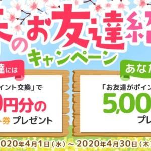 ECナビ 「おトク満開!春のお友達紹介キャンペーン」開催中!