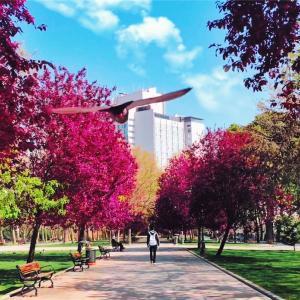 延世大学と迷いに迷ってソウル市立大学の韓国語語学堂に留学することに決めました!その②-準備編