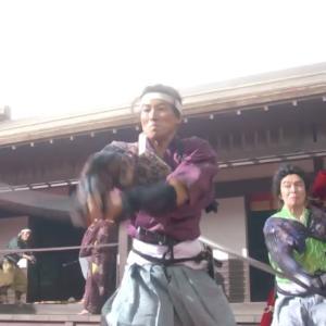 大河ドラマ 麒麟がくる 第6回 三好長慶襲撃計画