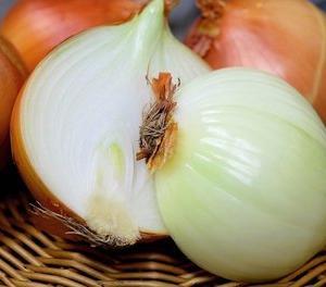 玉ねぎをたっぷり食べられる簡単イタリアのチポッラ―タのレシピ