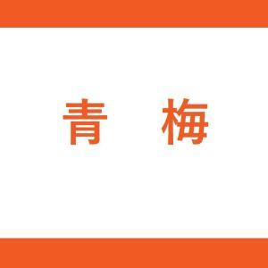 【JR青梅駅】青梅線(1・2番線:当駅止まり)の階段・エレベーター付近の降車位置情報