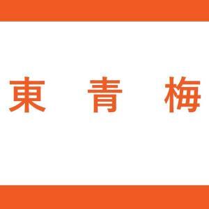 【JR東青梅駅】青梅線(2番線:立川方面)の階段・エレベーター付近の降車位置情報
