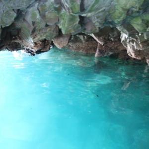 浄土ヶ浜で青の洞窟などを見学してから帰宅