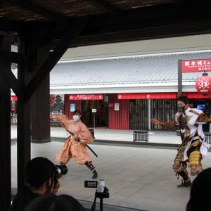 おもてなし武将隊の演武を見学してからホテル入りして夕食は熊本で