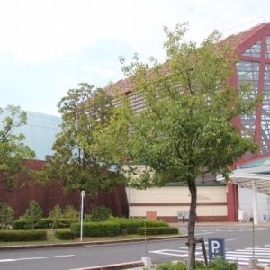 9/23 NHK ガッテン「旬到来!今年の梨をはずれナシにするSP技」