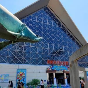 スマスイ(神戸市立須磨海浜水族園)へ行ってきました。オススメの駐車場情報も有り。
