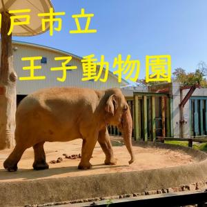 ずっと行きたかった動物園に行ってきたよ。ひー様五感をフル活用して初めての動物園を楽しむ。