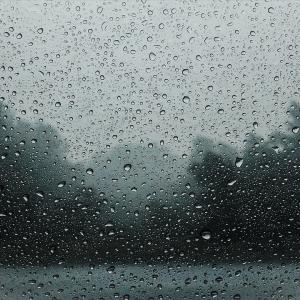 雨と冬の寒さ