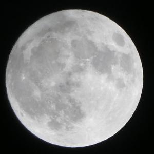 満月は明日だけど