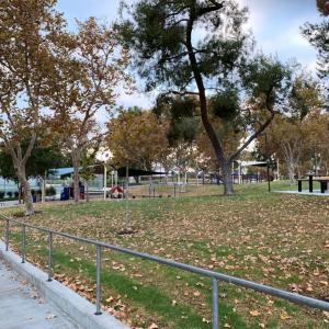 公園めぐり♫
