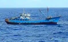 違法操業 過去の10倍 好き放題に盗っていく中国漁船や領海侵入する艦船