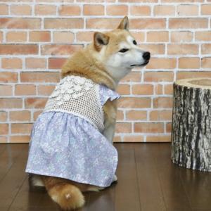 柴犬マイア 新しい手作り服(Ver98)ができました