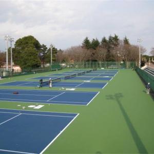 【テニス草トー】茨城県周辺で参加できる草トーを紹介!