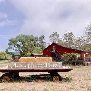 """【シカモア温泉宿泊記】子供〜大人まで楽しめるファーム""""Avila Valley Barn"""""""