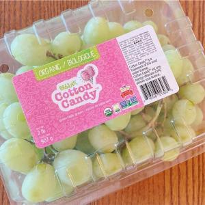 【トレジョ】あま〜いコットンキャンディグレープの季節到来!