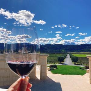 【カリフォルニアワイン】ナパバレー おすすめのワイナリー10選!