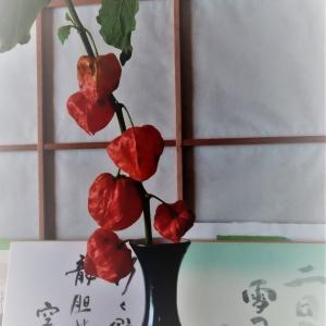 鬼灯(ほおづき)