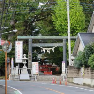 【上野国総社】総社神社(そうじゃじんじゃ)