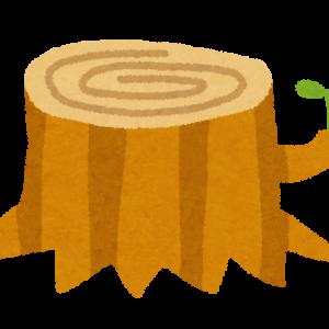 【神話SS】アマテラス「葦原の中つ国をオシホミミに治めさせるにはどうすればいいか会議ぃ~!!」バーン!!(国譲り神話/天菩比編)
