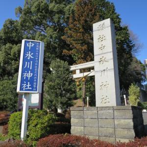 式内社・中氷川神社(なかひかわじんじゃ・山口)/埼玉県所沢市