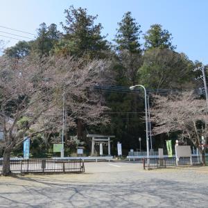 式内社・大井神社(おおいじんじゃ)/茨城県水戸市