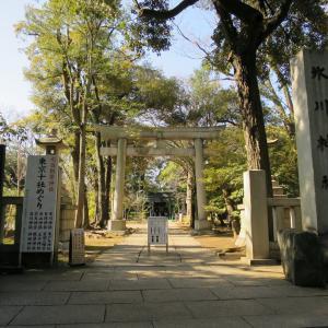 赤坂氷川神社(あかさかひかわじんじゃ)/東京都港区