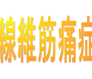 モルモットと学ぶ【線維筋痛症】!!リハビリ職経験者の闘病体験記~運動療法~