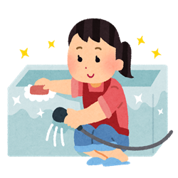 【おススメ❗】線維筋痛症の私にも出来る⁉無理なくお手軽な浴室のカビ掃除‼