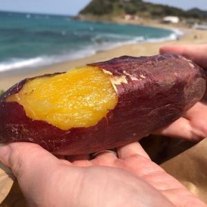 【福岡の焼き芋】おやつスタンドと二見ヶ浦の自然で美味しい焼き芋を楽しもう【写真付き】