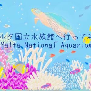 【2019.10】マルタ国立水族館ーMaltaNationalApuariumへ行ってみたー