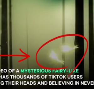 妖精か?新スカイフィッシュか?謎の飛翔生物が撮影される!